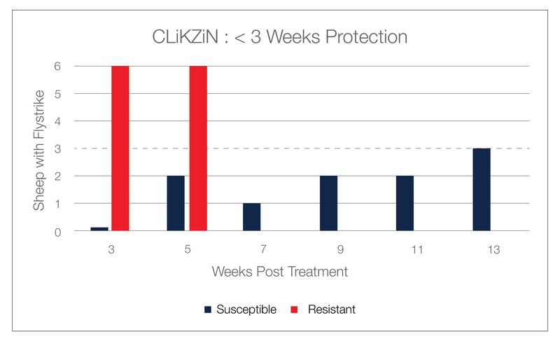 Clikzin 3 week